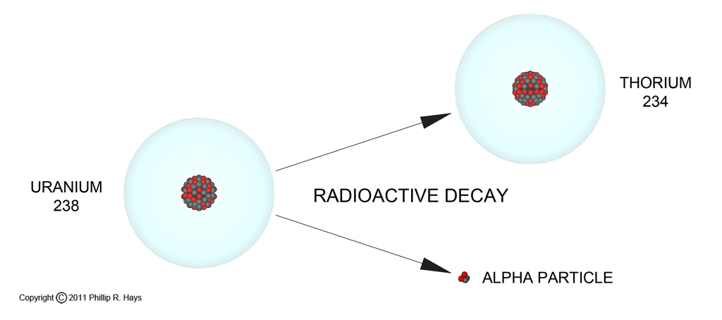 section 12 3 assessment dating with radioactivity Chapter 3—radioactivity 3-2 the chart of the nuclides, part of which is shown in fig 3-1, is a plot of nuclei as a function of proton number, z, and neutron number, nall stable nuclei and known.